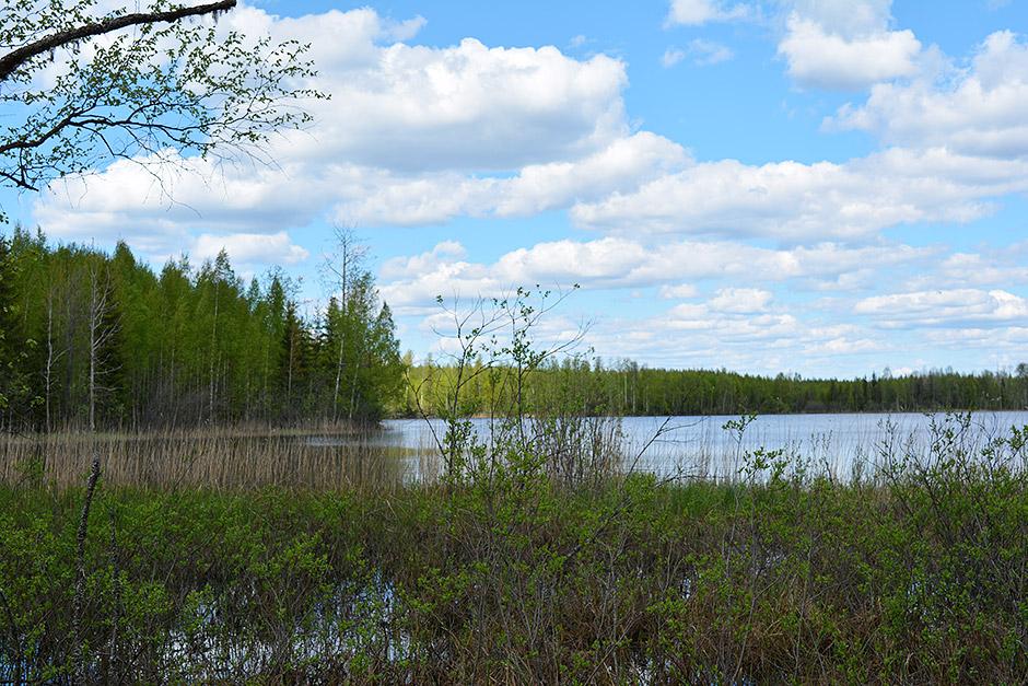 Väärä-järvi