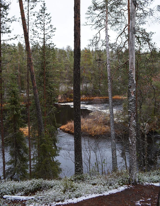 Maisema Oulankajoelle Kiutakönkäälle mentäessä