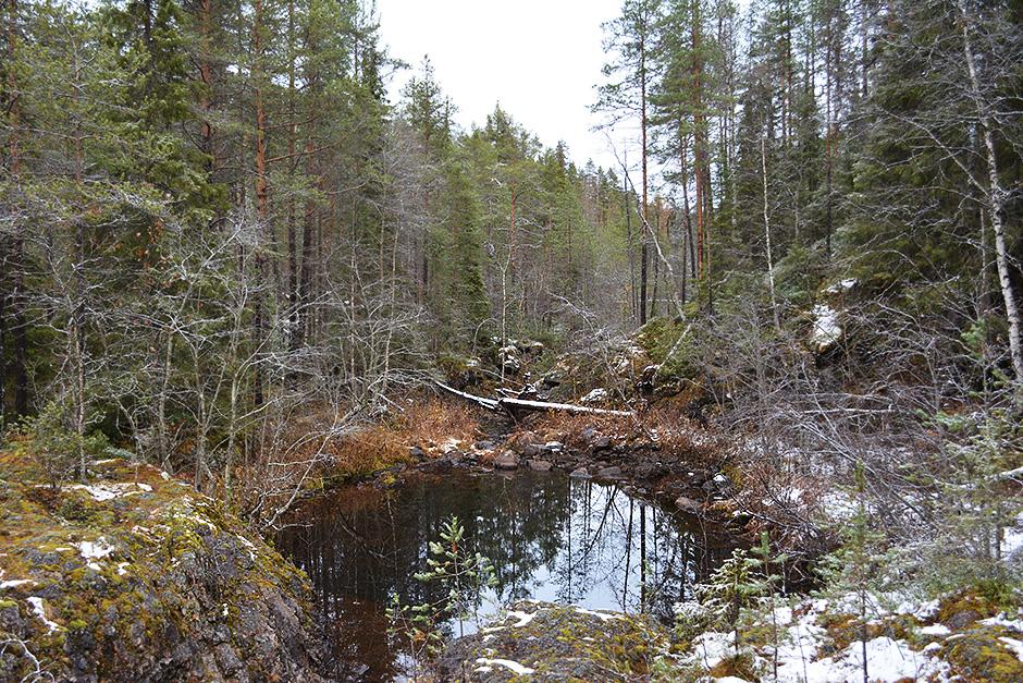 Pieni vesikkö Kiutakönkään vieressä