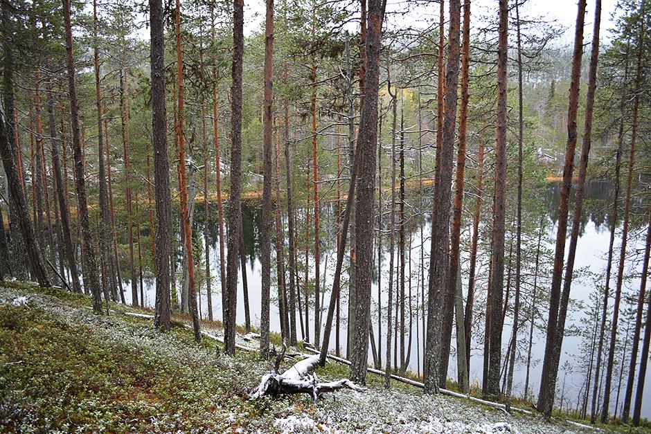 Talvilampi Rytikönkään reissulla