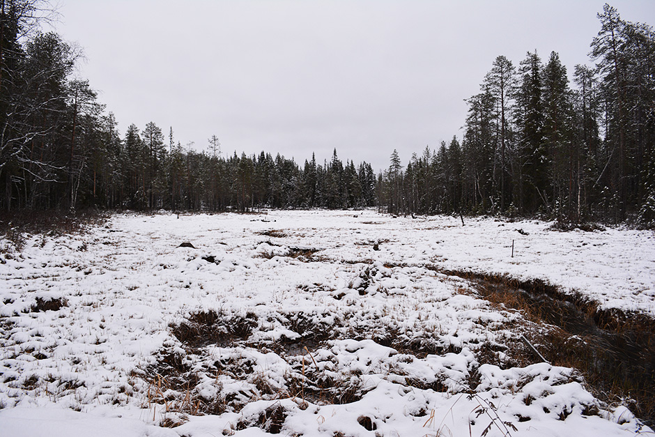 Suo peittyy lumeen Rytisuolla