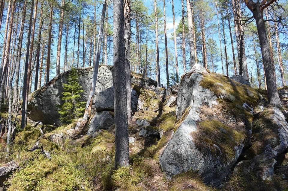 Hiidenkiven kierroksen kiviä