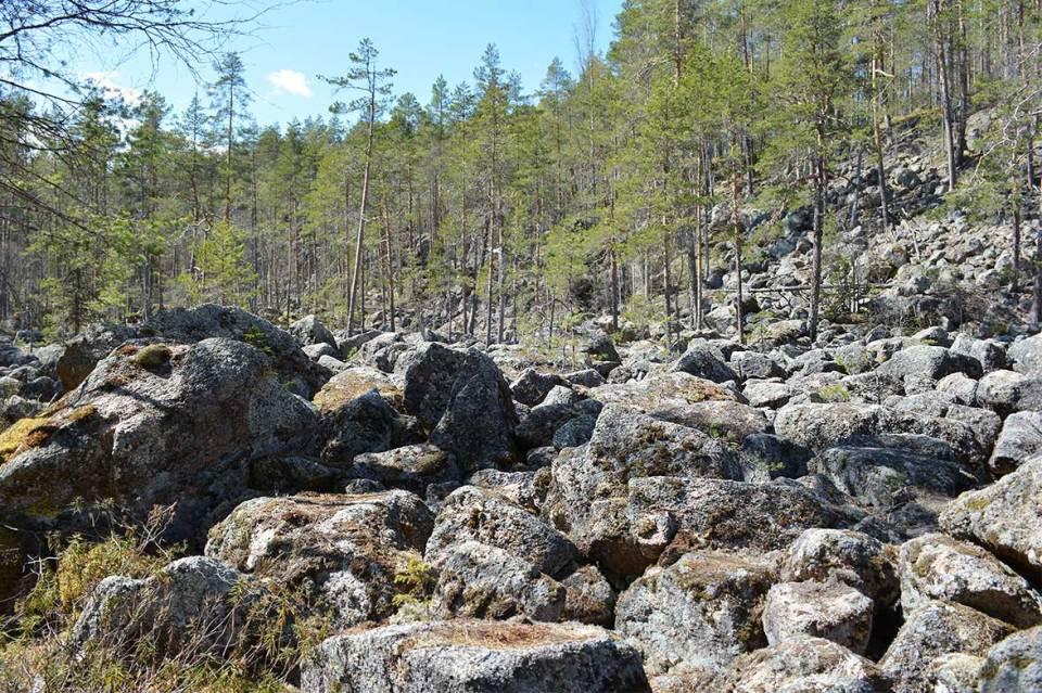 Jäppilän kivikurun kiviä