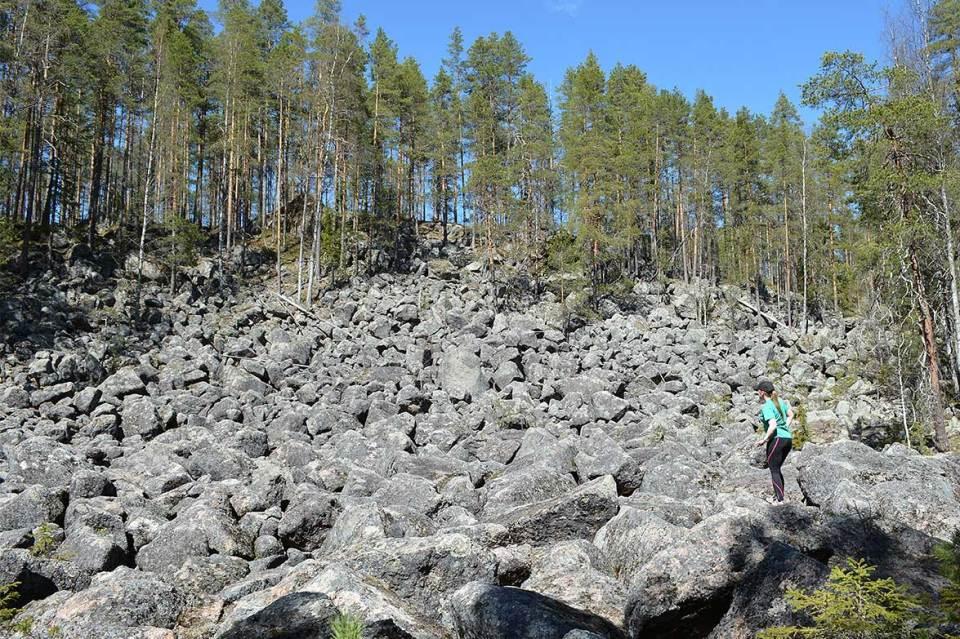 Jäppilän kivikurun pirunpeltoa