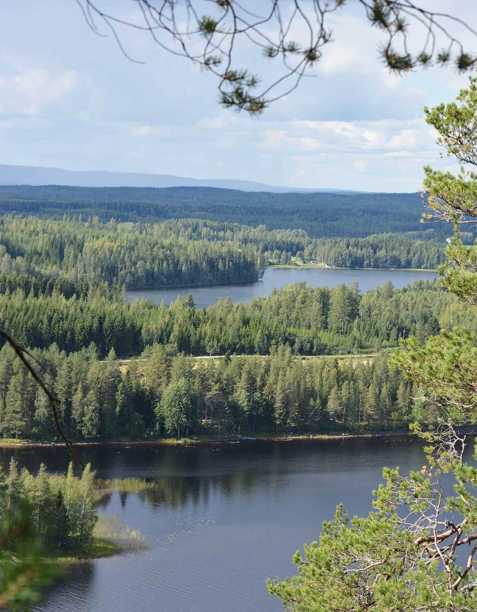 Maisema Juankosken / Nilsiän Kypäräinen-vuorelta