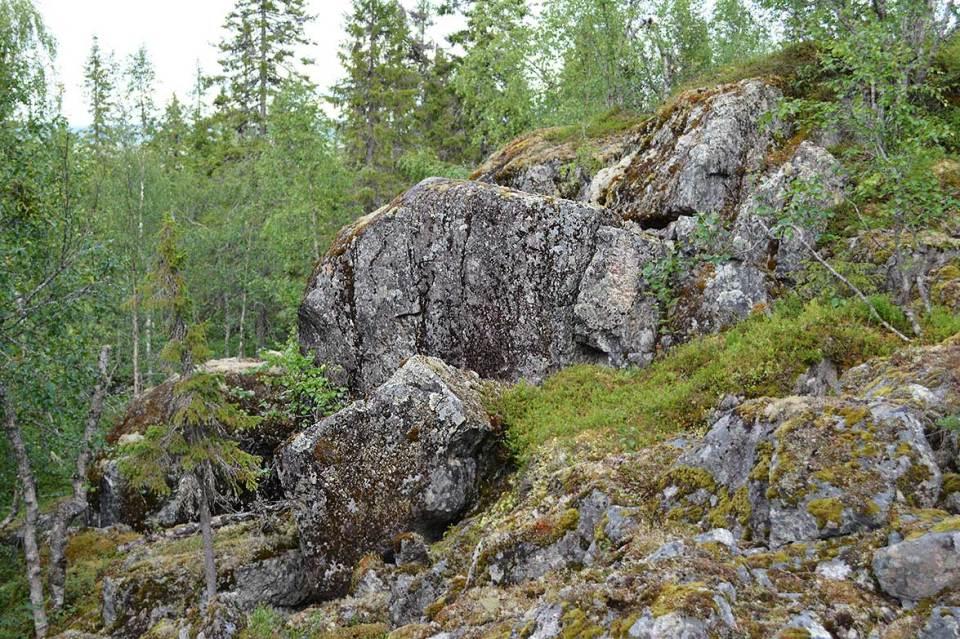 Kiviä, niin paljon kiviä