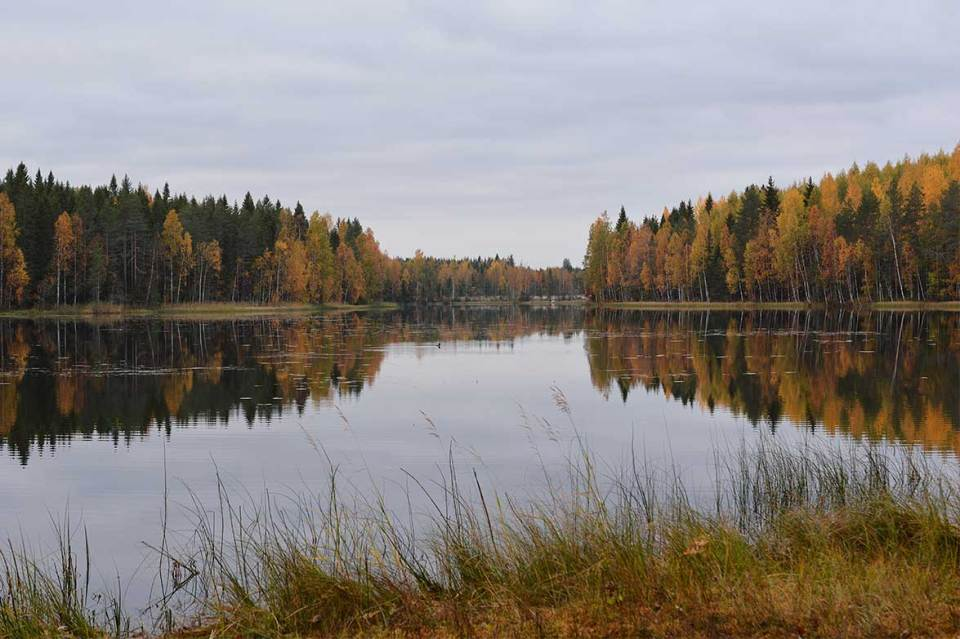 Iso-Varkaanlampi