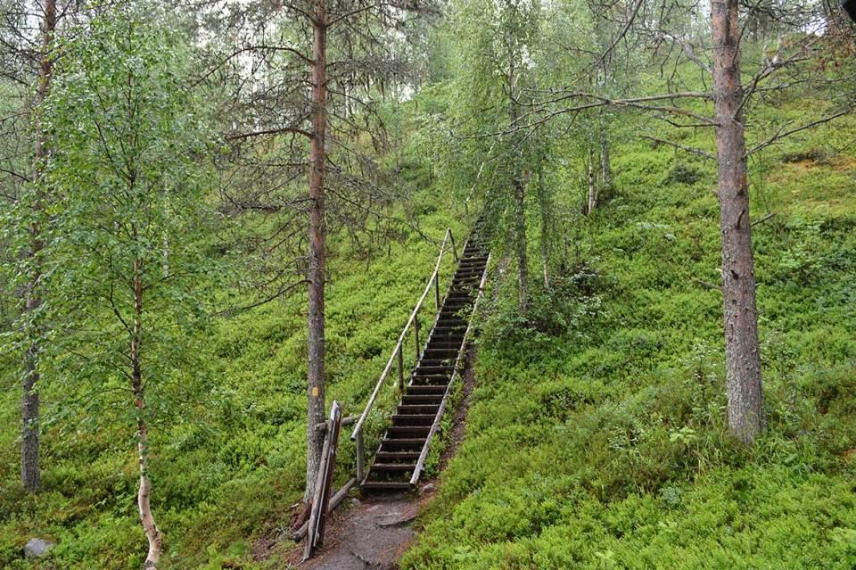 Pytkyn pyrähdyksen pitkät portaat