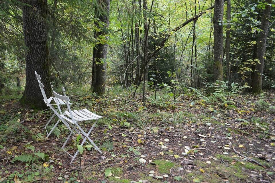 Kaksi tuolia on jätetty luontopolun varrelle.