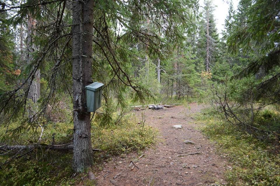 Postilaatikko ja vieraskirja Vanuvuoren huipulla.
