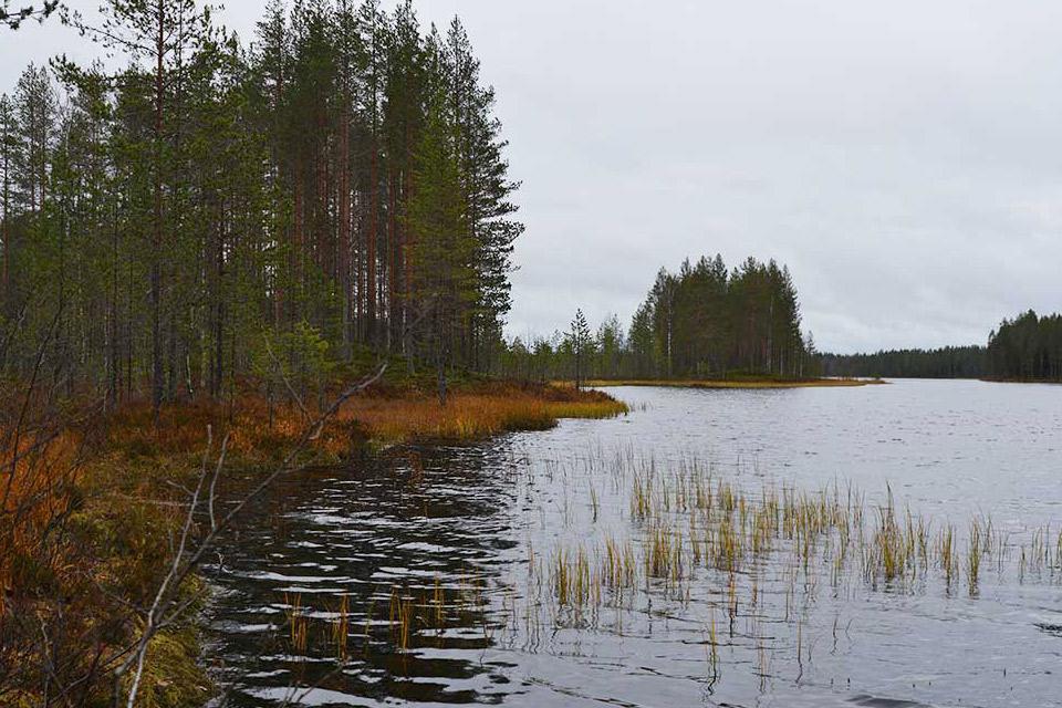 Tiilikkajärven kansallispuiston Autiojärvi