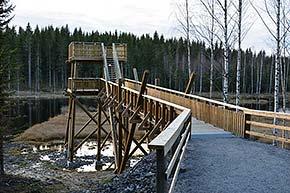 Keihäsjärven lintutorni Kuopion Syvänniemessä