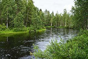 Naavaparran polku Syötteen kansallispuistossa