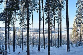 Puijonsarven näköalapaikka Puijolla talvella