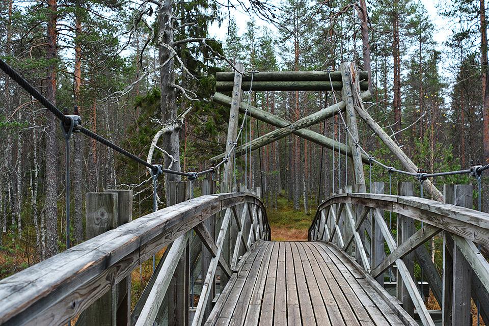 Riippusillalla Uiton kämpän vieressä Tiilikkajärven kansallispuistossa.