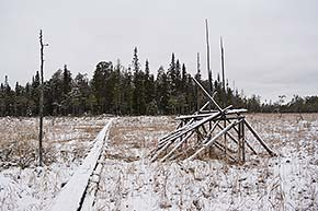 Rytikönkään reissu talvella Oulangan kansallispuistossa