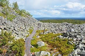 Seitakierros Pallas-Yllästunturin kansallispuistossa