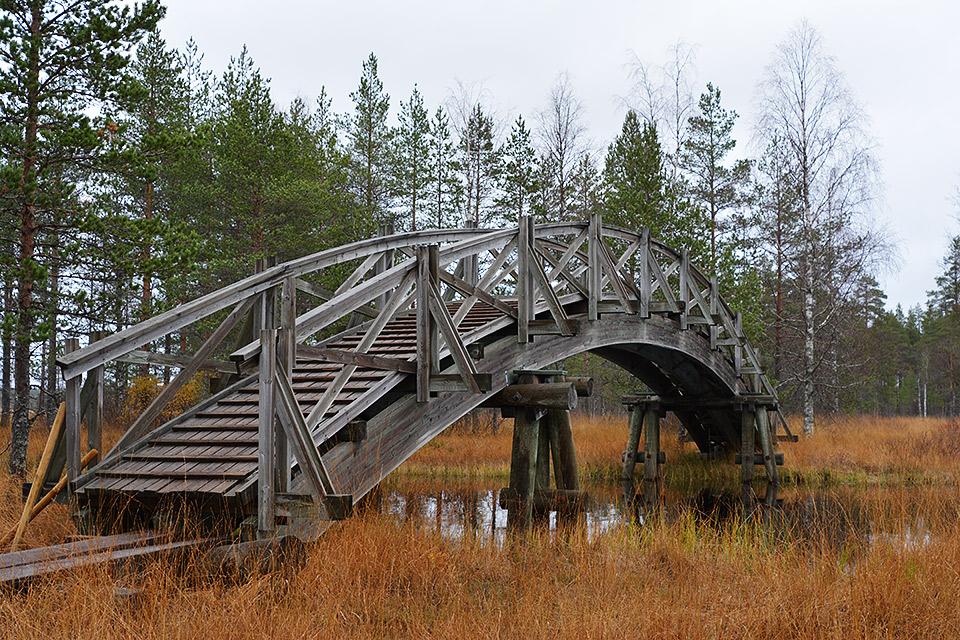 Silta Tiilikkajärven kansallispuistossa.