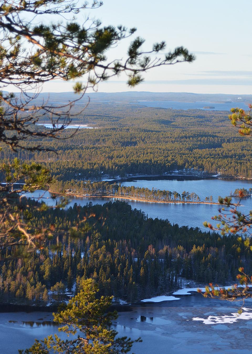 Osittain jäätynyt järvi ja maisemaa kiivetessä kohti Suolammen laavua