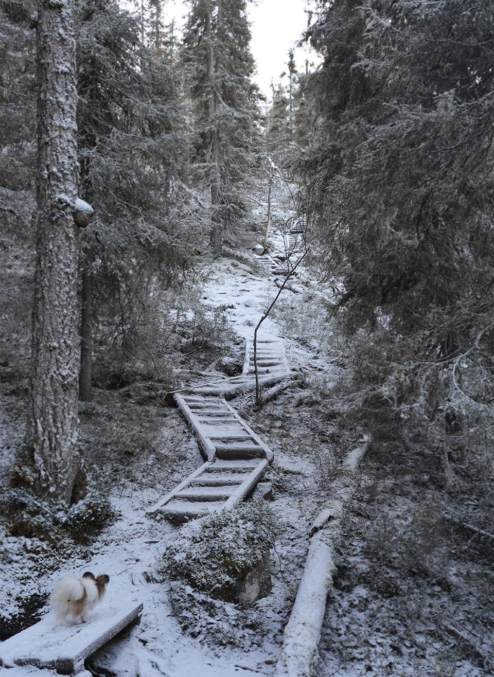 Jyrkät portaat kohti Valtavaaraa