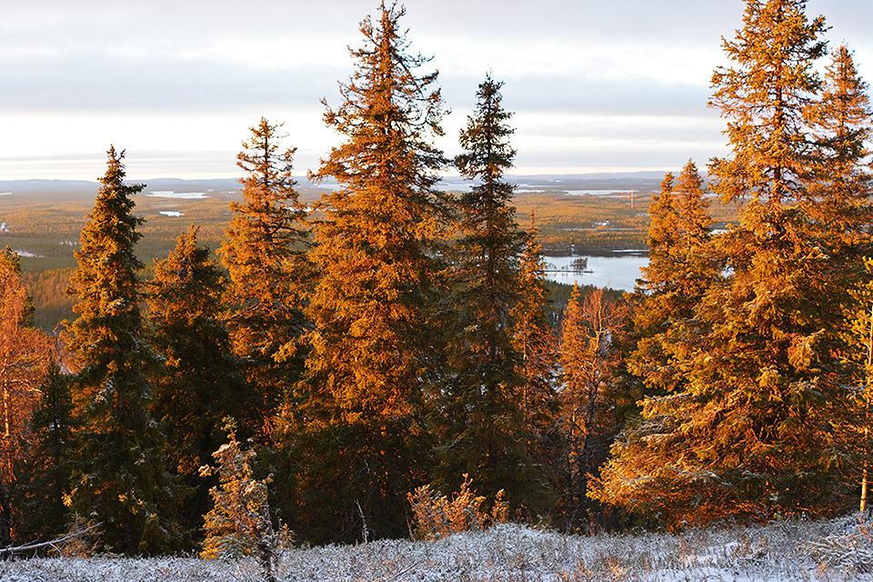 Valtavaaran pohjoispuolen maisemat auringonlaskussa