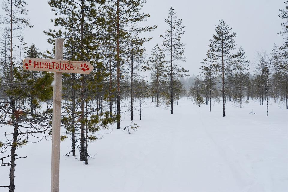 Tiilikkajärven kansallispuisto talven huoltoura opaste kävelijöille