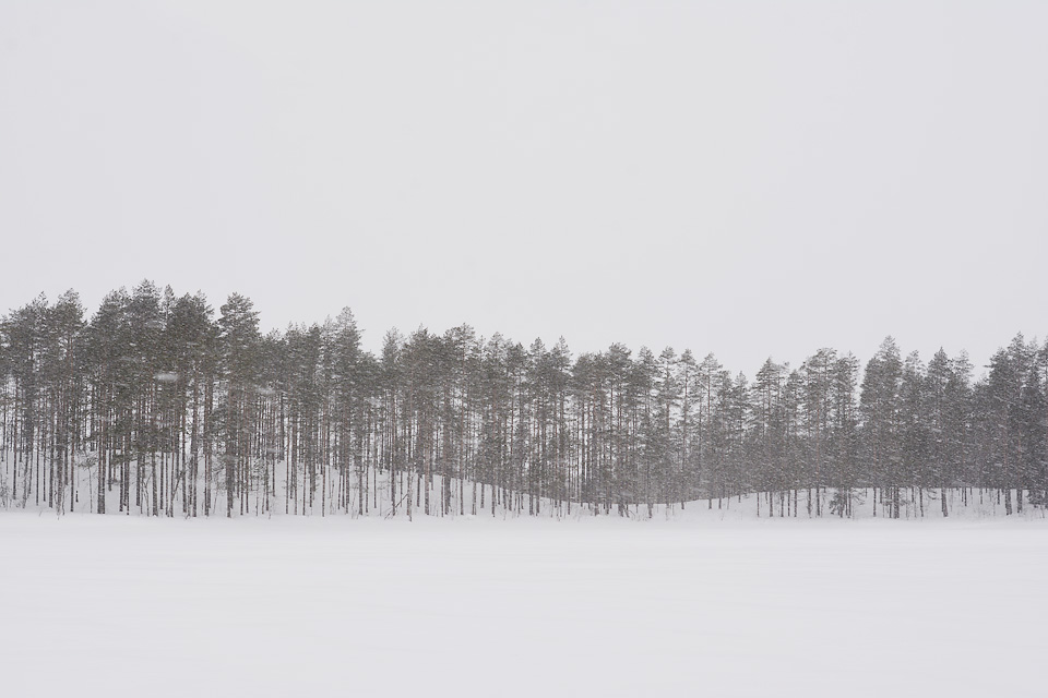 Tiilikkajärven kansallispuisto talvella ja harjannemaisema