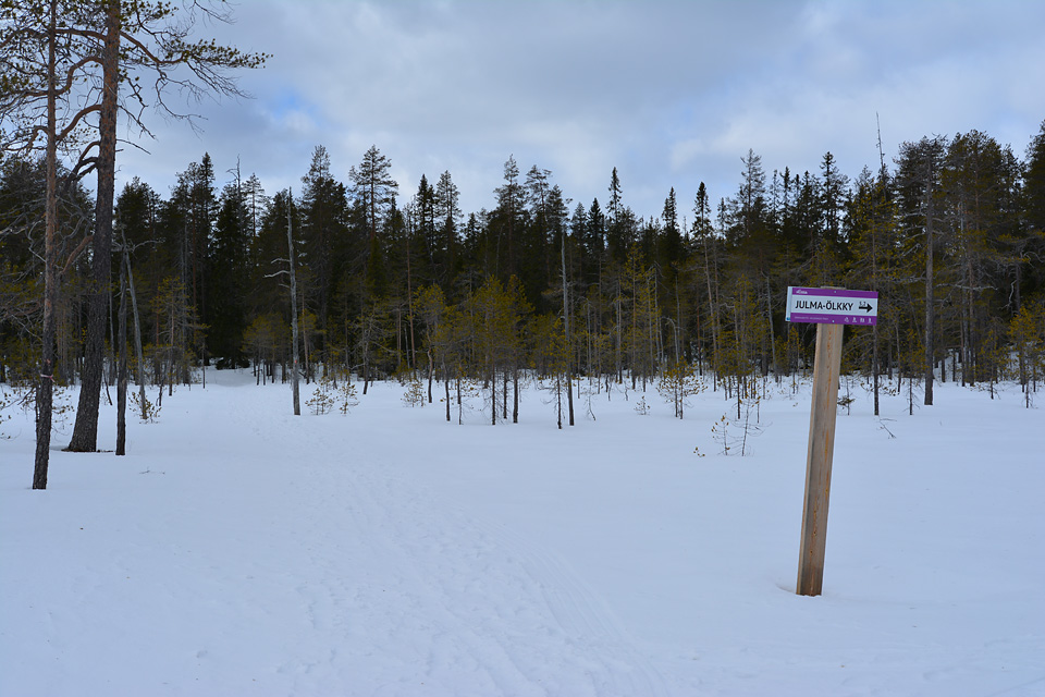 Kyltti keskellä suoaluetta näyttää polun haaran kohti Julma-Ölkkyä.