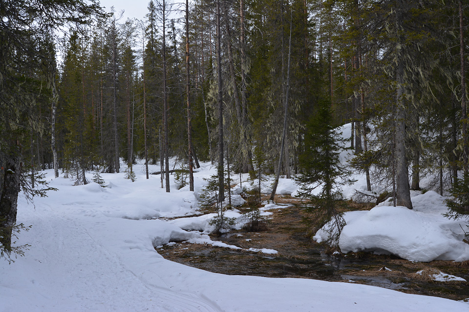 Maisemia reitin varrelta, tässä osittain sula joenmutka.